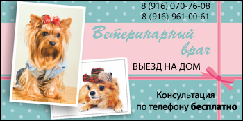 Ветеринарный врач на дом Подольск