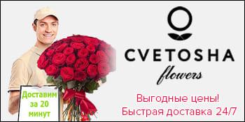 Цветоша Подольск