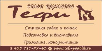 Тефи Подольск